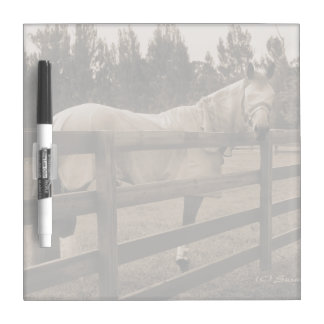 Horse in fly clothes sepia looking back over fence Dry-Erase board