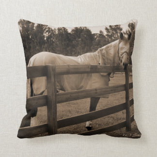 Horse in fly clothes sepia looking back over fence pillow