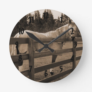 Horse in fly clothes sepia looking back over fence round clock