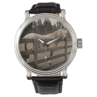 Horse in fly clothes sepia looking back over fence wrist watch