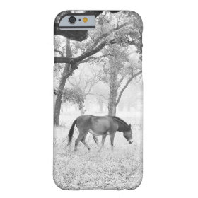 Horse In Foggy Field Of Oaks Barely There iPhone 6 Case