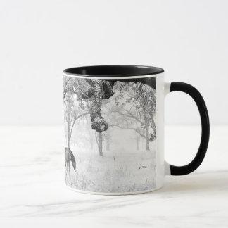 Horse In Foggy Field Of Oaks Mug