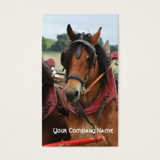 Horse in harness with wooden collar business card