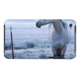 Horse in hazy field barely there iPod case