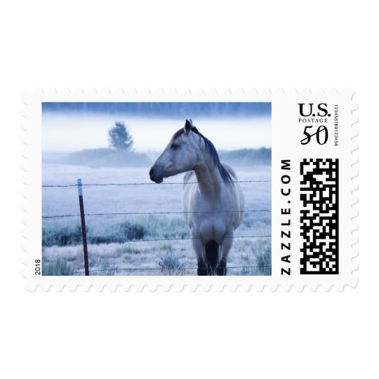Horse in hazy field postage