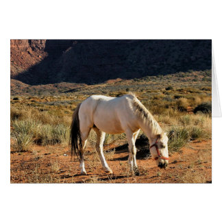 Horse in Monument Valley Greeting Card