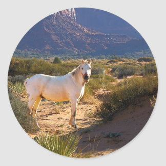 Horse in Monument Valley Stickers