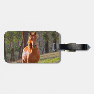 horse in pasture luggage tag