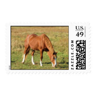 Horse in Pasture Postage Stamps