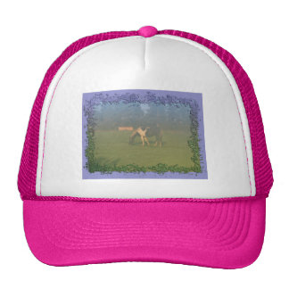 Horse In Pasture: Spotted Horse Eating Trucker Hat
