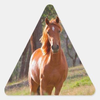 horse in pasture triangle sticker