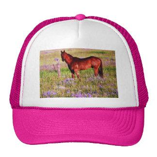 horse in pasture trucker hat