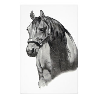 HORSE IN PENCIL STATIONERY PAPER