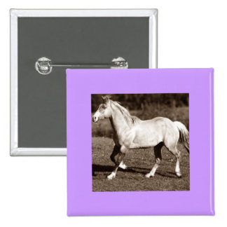 horse in sepia buttons