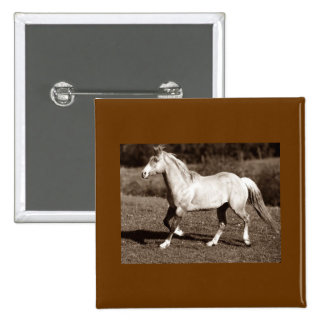 horse in sepia pin