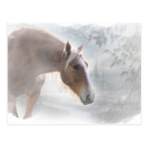 Horse in Snow Season's Greetings Postcard