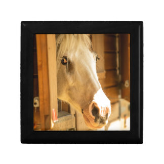 Horse in stables jewelry box