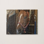 Horse in stall jigsaw puzzle