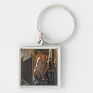 Horse in stall keychain