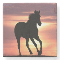 Horse In Sunrise Stone Coaster