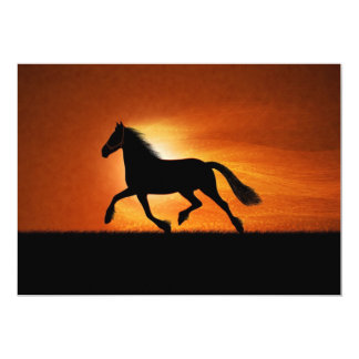 Horse In Sunset Card