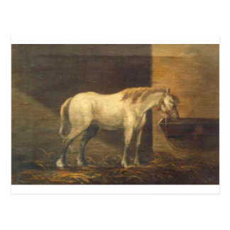 Horse in the Barn by Gheorghe Tattarescu Postcard