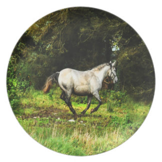 Horse in the field party plates