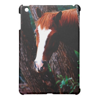 Horse in the forest cover for the iPad mini