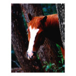 Horse in the forest letterhead design