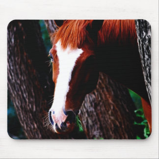 Horse in the forest mouse pad
