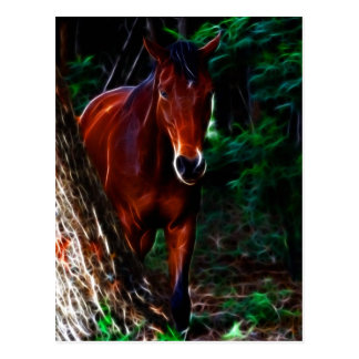 Horse in the forest postcard