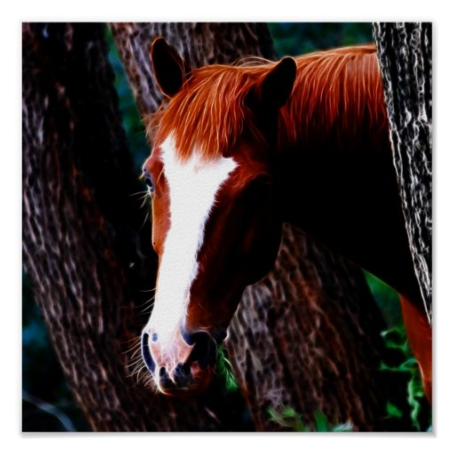 Horse in the forest poster