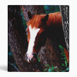 Horse in the forest vinyl binders