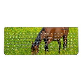 Horse keyboard, wireless
