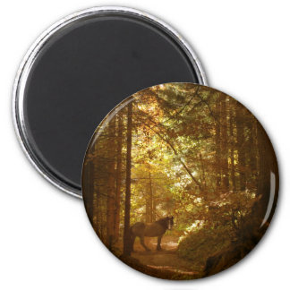 Horse in The Magically Lit Forest Magnet
