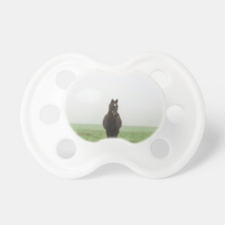 Horse in the mist on a meadow pacifier