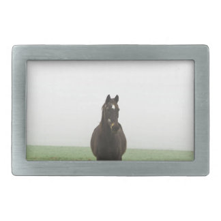 Horse in the mist on a meadow rectangular belt buckle