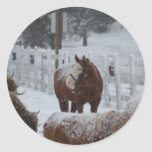 Horse in the snow classic round sticker