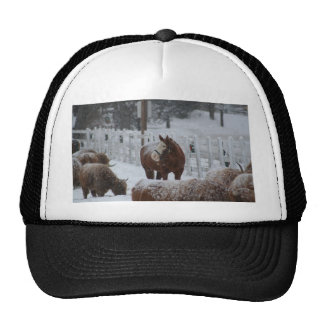 Horse in the snow mesh hat