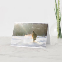 Horse in the snow holiday card