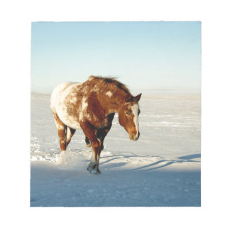 horse in the snow notepad
