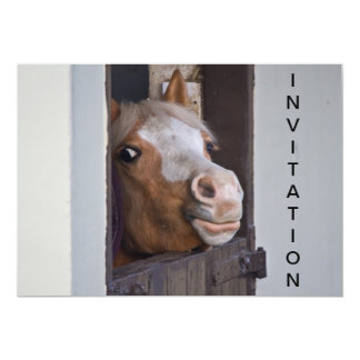Horse in the Stables  Invitation