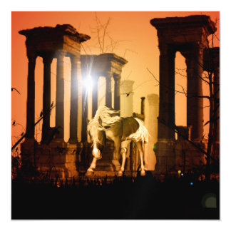 Horse in the sunset magnetic card