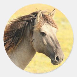 Horse in the wild classic round sticker