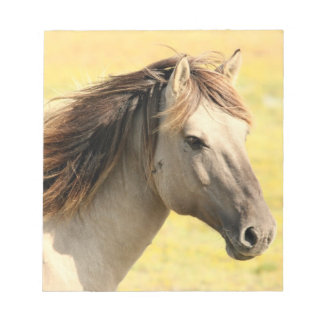 Horse in the wild memo note pad