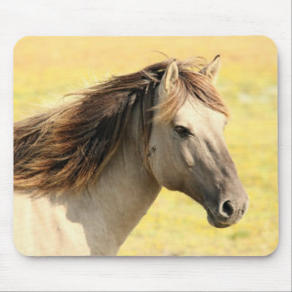 Horse in the wild mouse pad