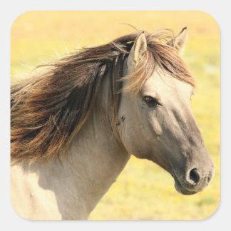 Horse in the wild square sticker
