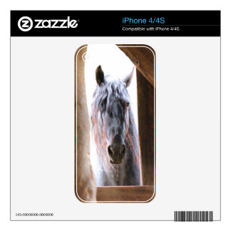 Horse In The Window Skins For iPhone 4