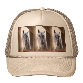 Horse In The Window Trucker Hat