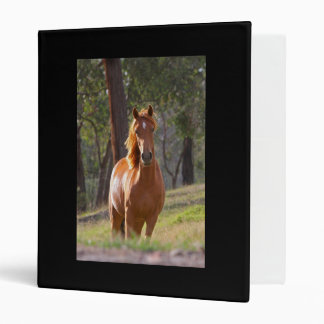 Horse In The Woods 3 Ring Binder